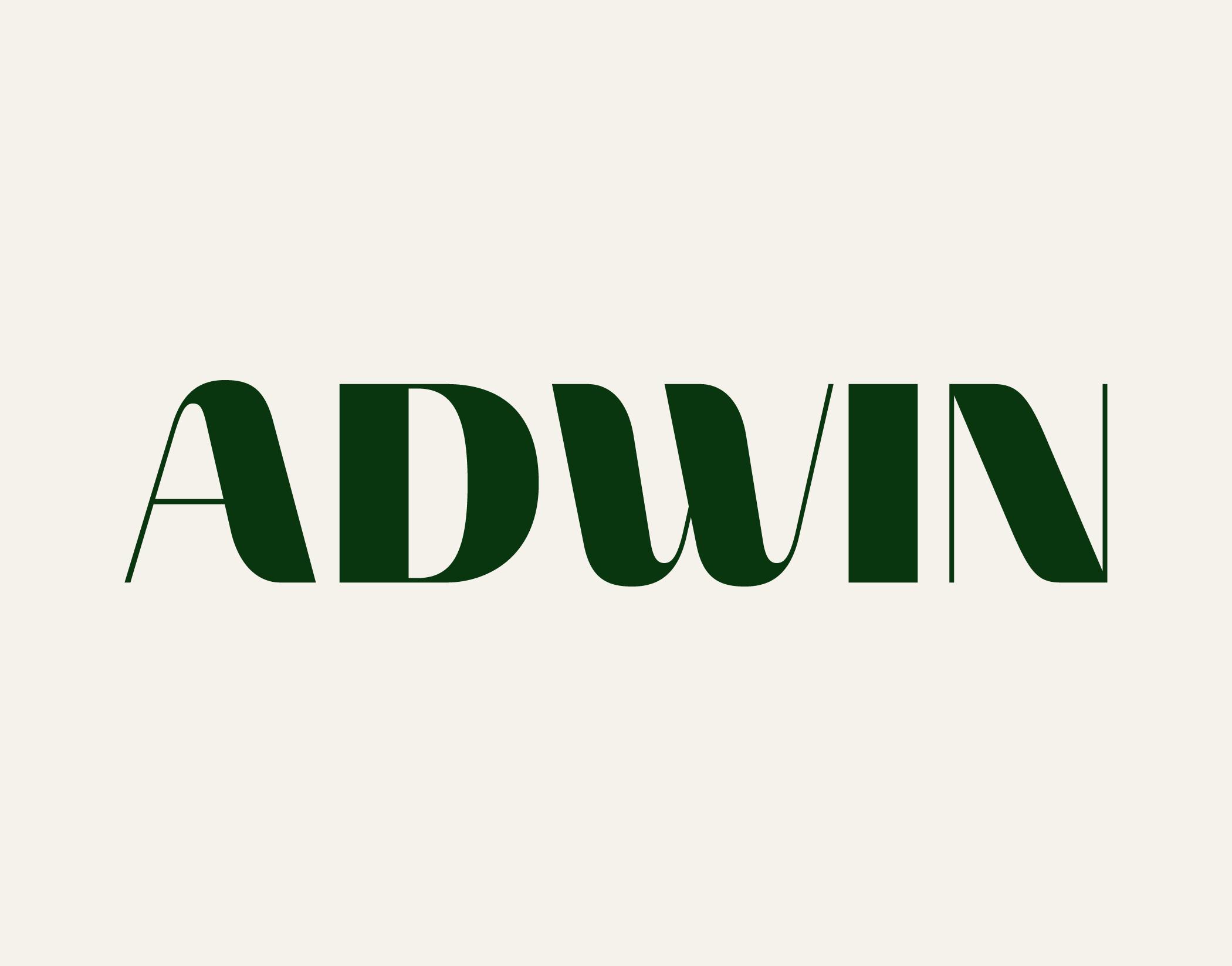 Adwin1-1